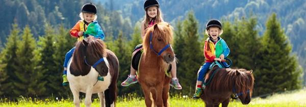 Reiterferien im Kinderhotel