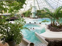 Familienhotel - Pools: Innenpool - Niederlande - Center Parcs Park Zandvoort