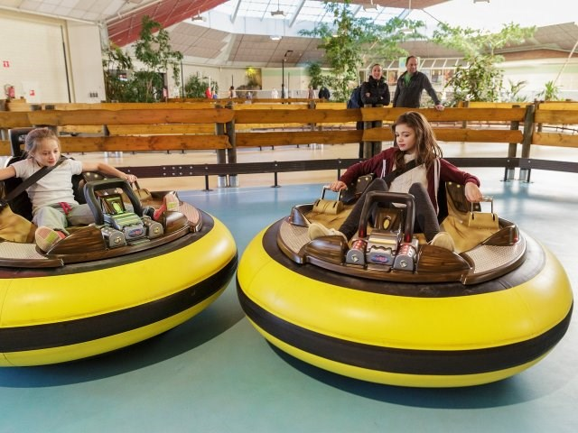 Kinderhotel: Bumper Cars - Center Parcs De Vossemeren